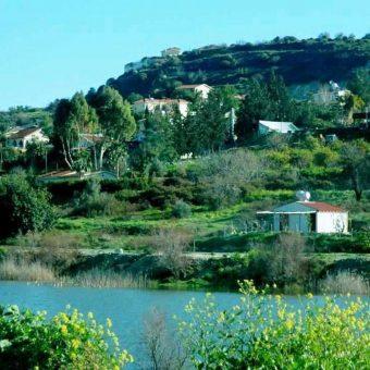 8520 SQM Land for sale in Foinikaria, Limassol